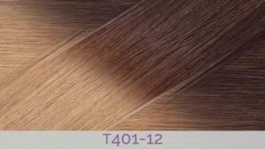 Hair Colour T401-12