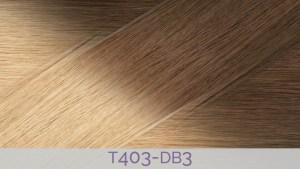 T403-DB3