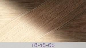 Hair Colour T8-18-60