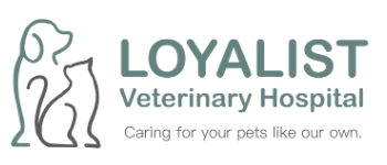 Belleville Animal Clinic | Loyalist Veterinary Hospital