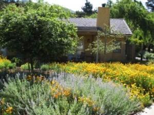 Bernardus Lodge cabin in spring flowers Carmel Valley CA