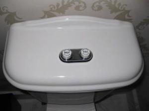 The Nines Dual Flush Toilet Portland Oregon