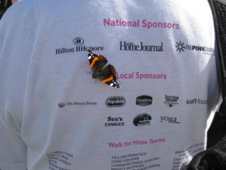 Butterfly by Hilton HHonors Sponsor