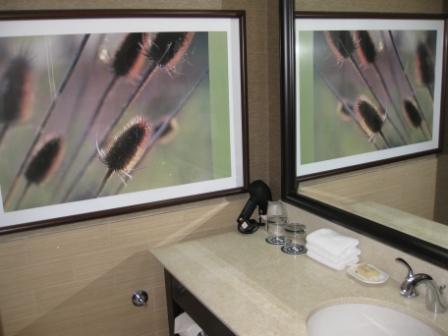 Bathroom Counter, Sheraton Denver Downtown