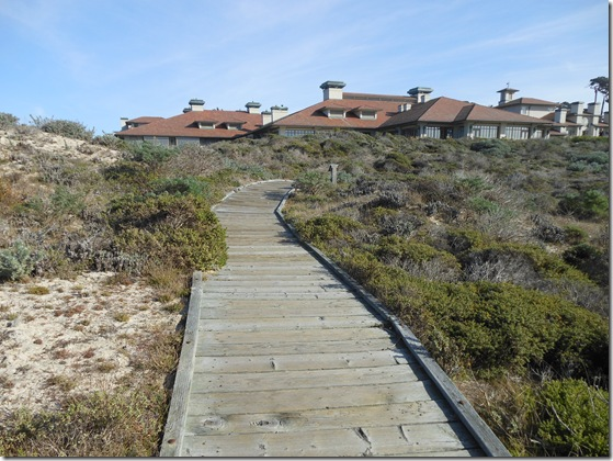 Asilomar-Spanish Bay 175