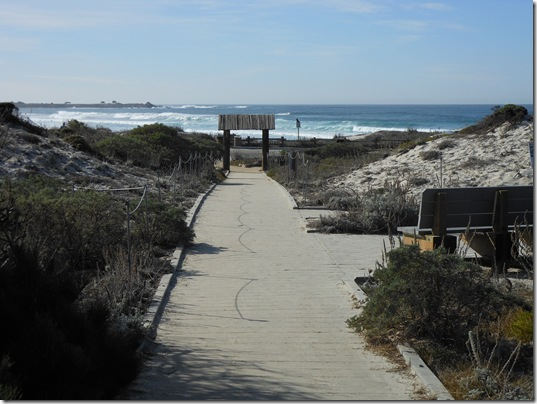 Asilomar-Spanish Bay 068