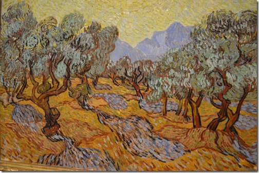 Van Gogh olive closeup