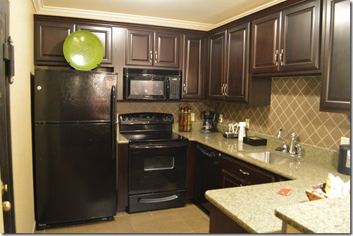 Capone Suite kitchen
