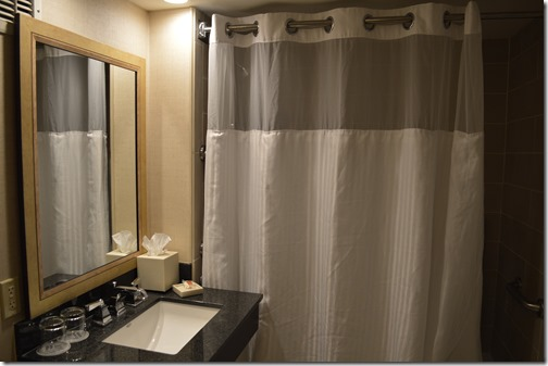 Mills House Bathroom-1