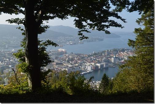 Bergen view-2
