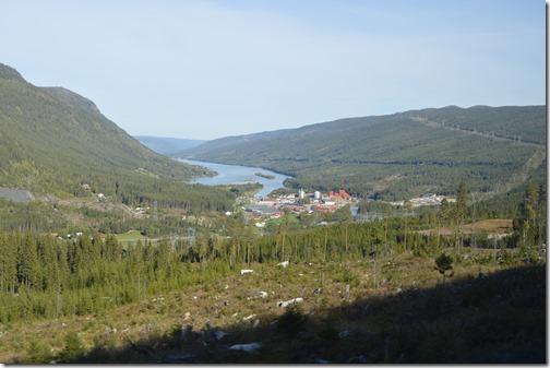 Norway timber