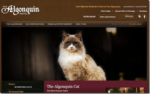Algonquin Matilda Cat