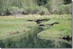 Lake Cowichan-Port Renfrew-12