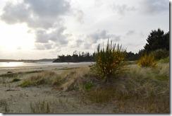 MacKenzie Beach-3
