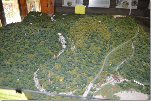 DuPont State Forest diorama