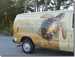 Sea Turtle van