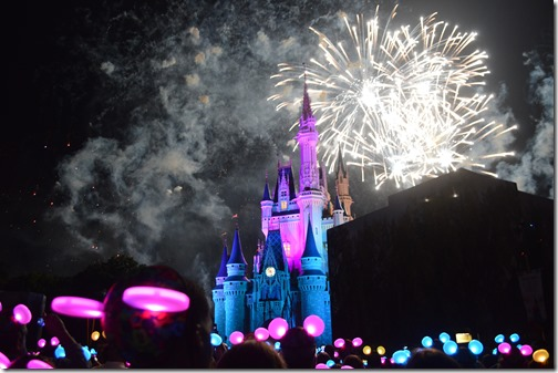 DisneyWorld fireworks