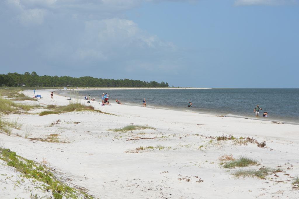 Dog Beaches On West Coast Florida