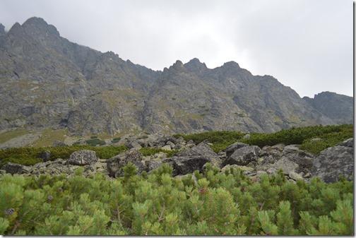Tatra rocks