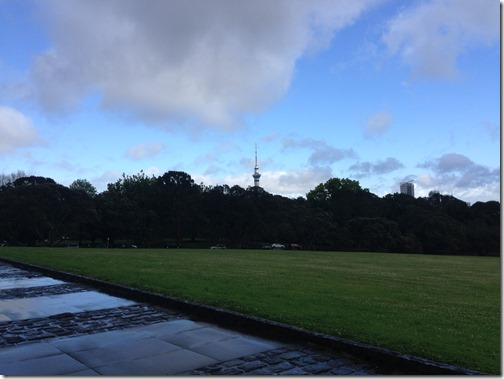Auckland Domain view