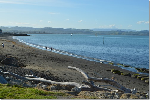 Port Ahuriri beach