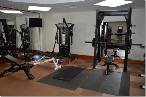 Rad Blu gym-4