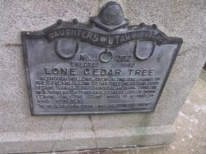 Cedar Tree Side Plaque