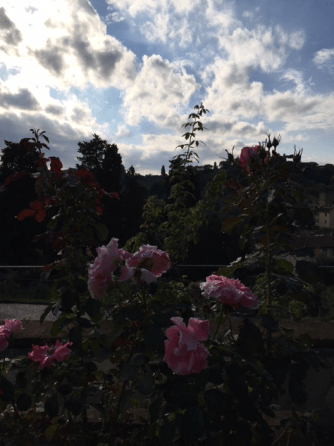 roses-piazzale