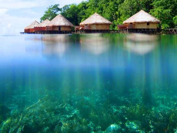 Una fila di strutture in legno con tetto di paglia fiancheggia il bordo dell'oceano.  Sotto l'acqua puoi vedere il corallo;  resort eco lusso