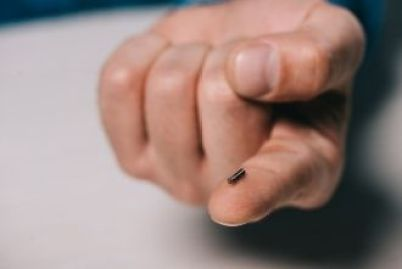 The Brave New World of Microchips for Humans
