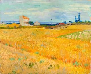 フィンセント・ファン・ゴッホ 《麦畑》 1888年6月 油彩・カンヴァス 50×61cm P. & N. デ・ブール財団 © P. & N. de Boer Foundation