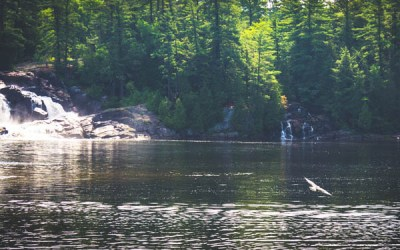 What I learned from my first solo road trip to Muskoka