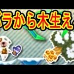 【12/2】バラから木が育ったwww 3DS UFOキャッチャー バッジとれーるセンター実況 どうぶつの森練習&本番台[ゲーム実況bygames tuthinoko]