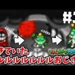 生きていたフルルおじさん【DS/マリオ&ルイージRPG2×2】#11[ゲーム実況byトオサカ]