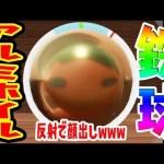 アルミホイル鉄球作ったら、反射で顔出てたwww つちのこ実況[ゲーム実況bygames tuthinoko]