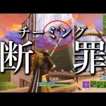 【フォートナイト】チーミングプレイヤーを断罪&ビクロする男。【Fortnite Battle Royale】[ゲーム実況byあぽろ.G]