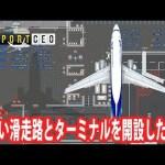 【Airport CEO】新しい滑走路とターミナルを開設した結果 【アフロマスク】[ゲーム実況byアフロマスク]