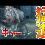 100回死んだら即終了のブラッドボーン-PART4-【Bloodborne】[ゲーム実況byよしなま]