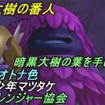 ドラゴンクエスト10【PS4】約5年ぶりにプレイ #40 暗黒大樹の葉を手に入れる レンジャー、魅惑のオトナ色、シール少年クエスト kazuboのゲーム実況[ゲーム実況bykazubo ゲーム攻略チャンネル]