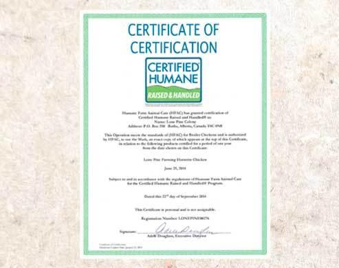 Lone PIne Chicken Humane-certificate