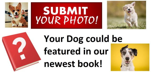 Your Dog could be feature din our new book!