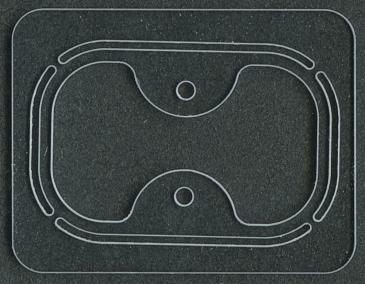 Transparent Sealing Gasket
