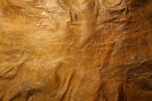 free-texture-leathery-skin-cyborgsuzystock