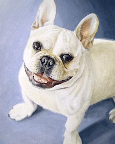 """""""Gordon"""" French Bulldog"""