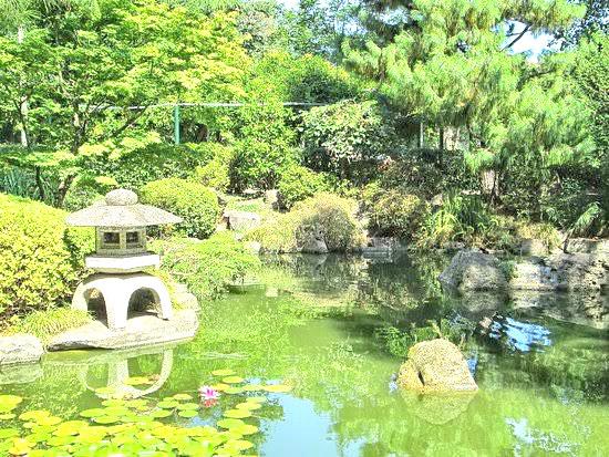 c1 Jardim Japonês.jpg