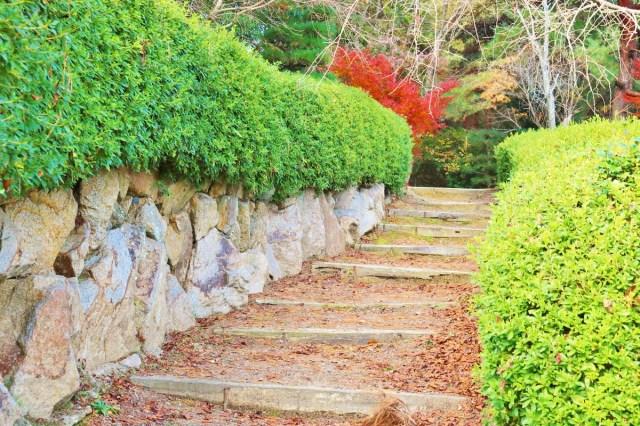 Kinbuchi_Park (6)