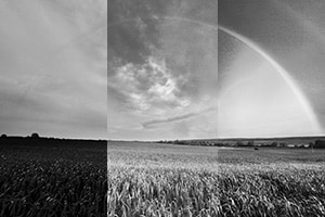 BW-Color-Filters