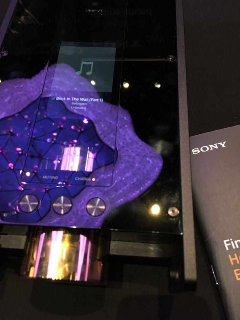 Sony's DMP-Z1