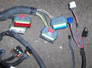 97 Camaro Z28 LT1 4L60E engine wire harness  LS1TECH