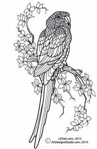 L S Irish macaw pattern